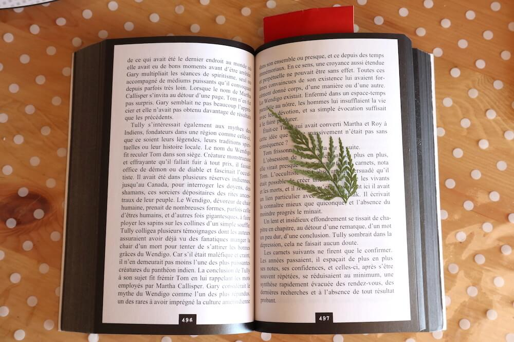 leaf in a book for electroforming
